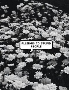 Allergic to stupid people.