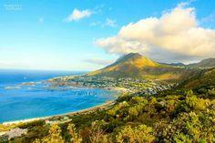 South Africa, Cape Town facebook.com/Parrottspics