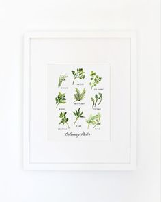 This is an archival inkjet print of the original watercolor. Herbs have a special place in my heart. As an avid cook and gardener, I love the