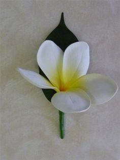 White Yellow Frangipani Buttonhole, Frangipani, Plumeria, Frangipani Boutonniere, Beach, Tropical, Wedding, Formal on Etsy, $6.50 AUD