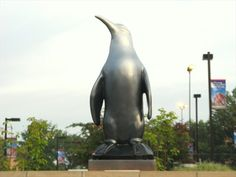 Youngstown State University is the Home of the Penguins.