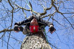 World Treehouses' Adam Laufer loves hanging around in the trees!
