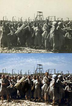 Auschwitz Memorial on