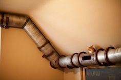katzenmöbel | Katzenmöbel Design – lustige, kreative Katzenverstecke