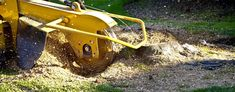 Stump grinding Sydney is an efficient and fast way of removing a stump from your property. Using the right equipment, it is possible to grind down the stump up to the ground level or under the ground levels to make it possible for lawn or other plants or even trees to be planted on top of it. for more information about Stump Removal Sydney call us in 0439413375.