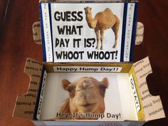 Hump Day Package  Kookin' With Kimberly