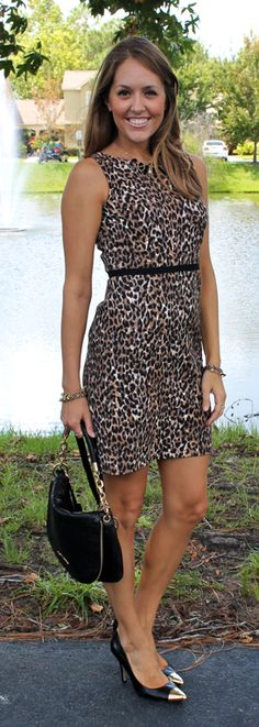 Today's Everyday Fashion: The Leopard Dress — J's Everyday Fashion