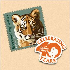 I Pin To Save Tigers.
