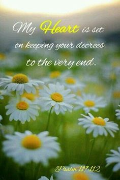 ❤️Bible verses ~ Psalm 119:112