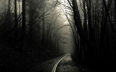Дорога, направление которой выбираешь только Ты...