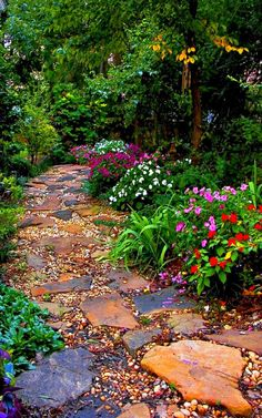 Garden paving slabs flowers colored decorating