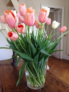 Whether you buy flowers at your local grocery store or a from a florist, here are 3 TIPS FOR MAKING TULIPS LAST: 1. unlike with most flowers, use a small amount of water in the vase. Otherwise, the tulips continue to grow and they'll bend over and break. 2. don't change the water and recut the stems- that will make them droop. 3. put a splash of bleach in the water to keep the water clear and you'll enjoy your beautiful tulips for an entire week!