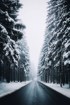 Winter, On The Road, Outdoors, Nature, Power In Nature, Exploring, Mountains, Landscape, Vscocam, EyeEm Best Shots, Rural, Forest, Winter Wonderland, Snow, Saxony by Johannes H. on EyeEm