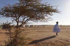 Le désert du Sahara. Reuters/Juan Medina