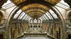 History & nature under one beautiful roof   , thank u @NHM_London afternoon well spent