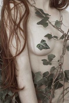 93 Best Dc Poison Ivy Images On Pinterest Dc Poison Ivy