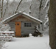 Tiny home in the snow.