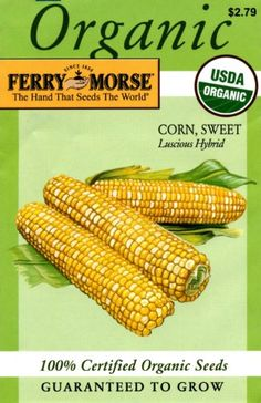 Ferry-Morse Organic Seeds 3183 Corn - Sweet Luscious Hybrid 25 Gram Packet - http://supplies.myraisedbedgarden.net/seeds-bulbs-plants/vegetables/corn/ferry-morse-organic-seeds-3183-corn-sweet-luscious-hybrid-25-gram-packet/