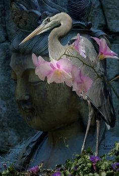 """""""Great Blue Heron with Orchids"""" prints available. (Orchid on heron on Buddha)"""