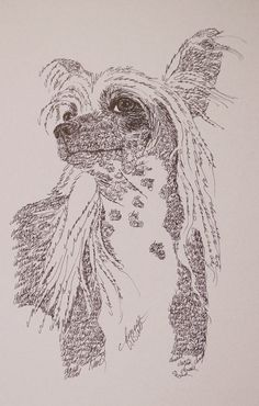 Dog art drawn entirely from the words Chinese Crested Dog. See all the 110 breeds at: drawDOGS.com Artist Kline can add your dogs name into the art.