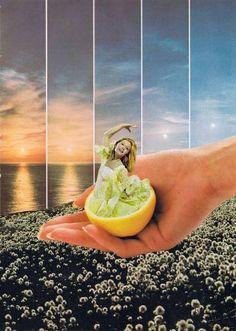"Saatchi Art Artist Alexandre Coll; Collage, ""Dandelion"" #art"