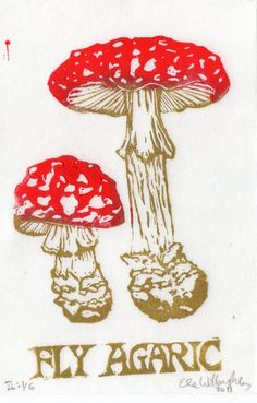 Fly Agaric Linocut - Fairytale Mushroom Amanita muscaria with Red ...