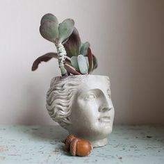 Venus Planter Roman Goddess Greco-Roman Head by brooklynglobal