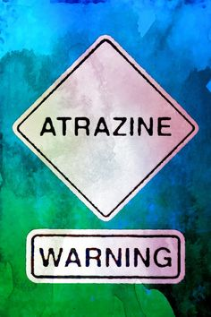 """ScienceDaily reports: """"Widely Used Herbicide, Atrazine, Causes Prostate Inflammation in Male Rats and Delays Puberty."""" http://www.sciencedaily.com/releases/2010/08/100824110852.htm"""