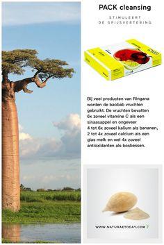 Baobab Ringana Naturae Today