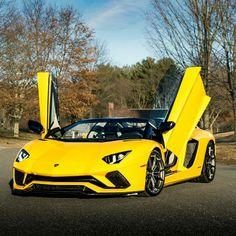 Lamborghini Aventador S Roadster Z_litwhips #lamborghiniveneno