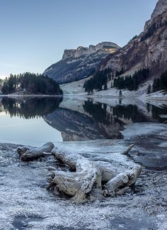 Ice Reflections by Altrim