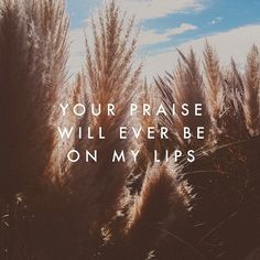 """Beautiful song.  """"Your Praise Will Ever Be On My Lips"""" by Bethel. Actually, I think the song is called """"Ever Be"""", but I'm not positive. I just wanted to give credit to Bethel."""