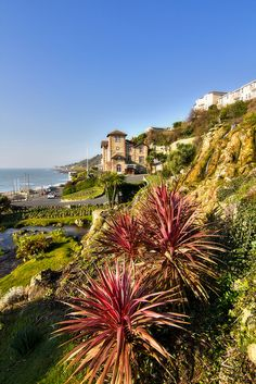 Ventnor Esplanade, Isle of Wight Shared by Motorcycle Fairings - Motocc Beautiful Places To Live, Great Places, Ventnor Isle Of Wight, Ile De Wight, Portsmouth England, Holiday Places, Kingdom Of Great Britain, Seaside Resort, Going On Holiday