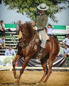 Alvaro Teba y Tiburona # domavaquera #lospalaciosyvillafranca #doshermanas #cantillana #elrocio #huelva #carmona #umbrete #almonte #andujar #guadix #baeza #villalbadelalcor #lapalmadelcondado #sanbartolomedelatorre #feriadesevilla #almonte #domadecampo #campeonatodomavaquera #huelva #horse #sevilla #caballos #Huelva #guadix #baeza