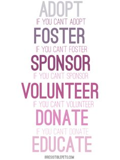 Foster Sponsor Volunteer Donate Educate... at least one of these can make a difference... image what two or more can do!