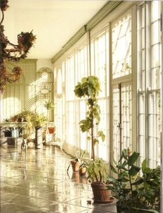 Port Eliot 19th c Orangery, published World of Interiors