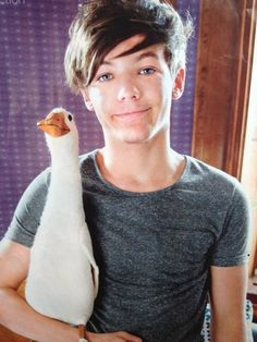 Find images and videos about one direction, louis tomlinson and on We Heart It - the app to get lost in what you love. Niall Horan, Zayn Malik, One Direction Pictures, I Love One Direction, Liam Payne, Foto One, Louis Tomilson, Louis Williams, James Horan