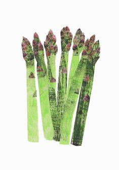 painted paper cut outs, spring asparagus - Clover Robin, artist Botanical Illustration, Illustration Art, Leeds College Of Art, Collages, Grafik Design, Food Illustrations, Food Art, Asparagus, Illustrators