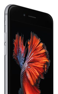 Imagen de http://store.storeimages.cdn-apple.com/4551/as-images.apple.com/is/image/AppleInc/aos/published/images/i/ph/iphone6s/scene3/iphone6s-scene3?wid=360&hei=590&fmt=jpeg&qlt=95&op_sharpen=0&resMode=bicub&op_usm=0.5,0.5,0,0&iccEmbed=0&layer=comp&.v=1441800400471
