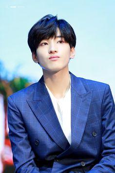 Seventeen Wonwoo, Seventeen Debut, Woozi, Jeonghan, Boy Idols, Adore U, Pledis Entertainment, Seungkwan, Kpop Groups