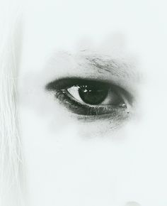 Focusing on a part of the face, such as the eye, is something new. Perhaps we can do mod/special on our eyes?