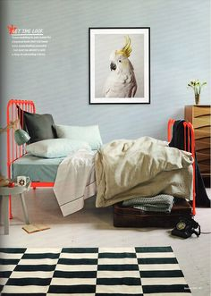 Love this DIY idea! Paint a vintage iron bed in neon for an updated spin on a classic style