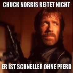 Chuck Norris reitet nicht LocoPengu - Why so serious?