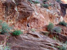 Angels Landing, Zion National Park. Should you do it??