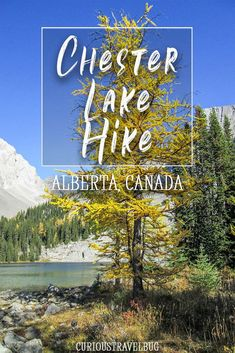 Looking for a free hike in Alberta's Rocky Mountains near to Banff? Chester Lake Hike is in Kananaskis Country and has gorgeous mountains, a meadow, and a lake. All in an easy afternoon hike. Newfoundland Tourism, Canadian Travel, Canadian Rockies, Travel Oklahoma, Hiking Tips, New York Travel, Travel Bugs, Alberta Canada, Banff
