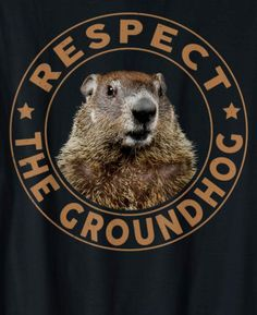 Groundhog Day Movie, Groundhog Day Activities, Happy Groundhog Day, Ground Squirrel, Pet Gifts, Birthday Fun, Brown Bear, Spirit Animal, Happy Day
