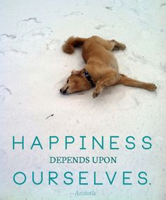 Happiness depends on ourselves. - Aristotle quote, plus a cute dog! // modiggity.com