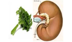 6 Unexpected Home Remedies That Actually WorkNeatologie.com