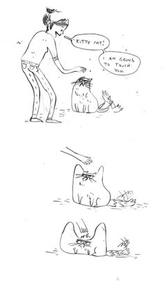 What cats do.
