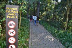 Bosque do Papa e Museu Oscar Niemeyer em Curitiba